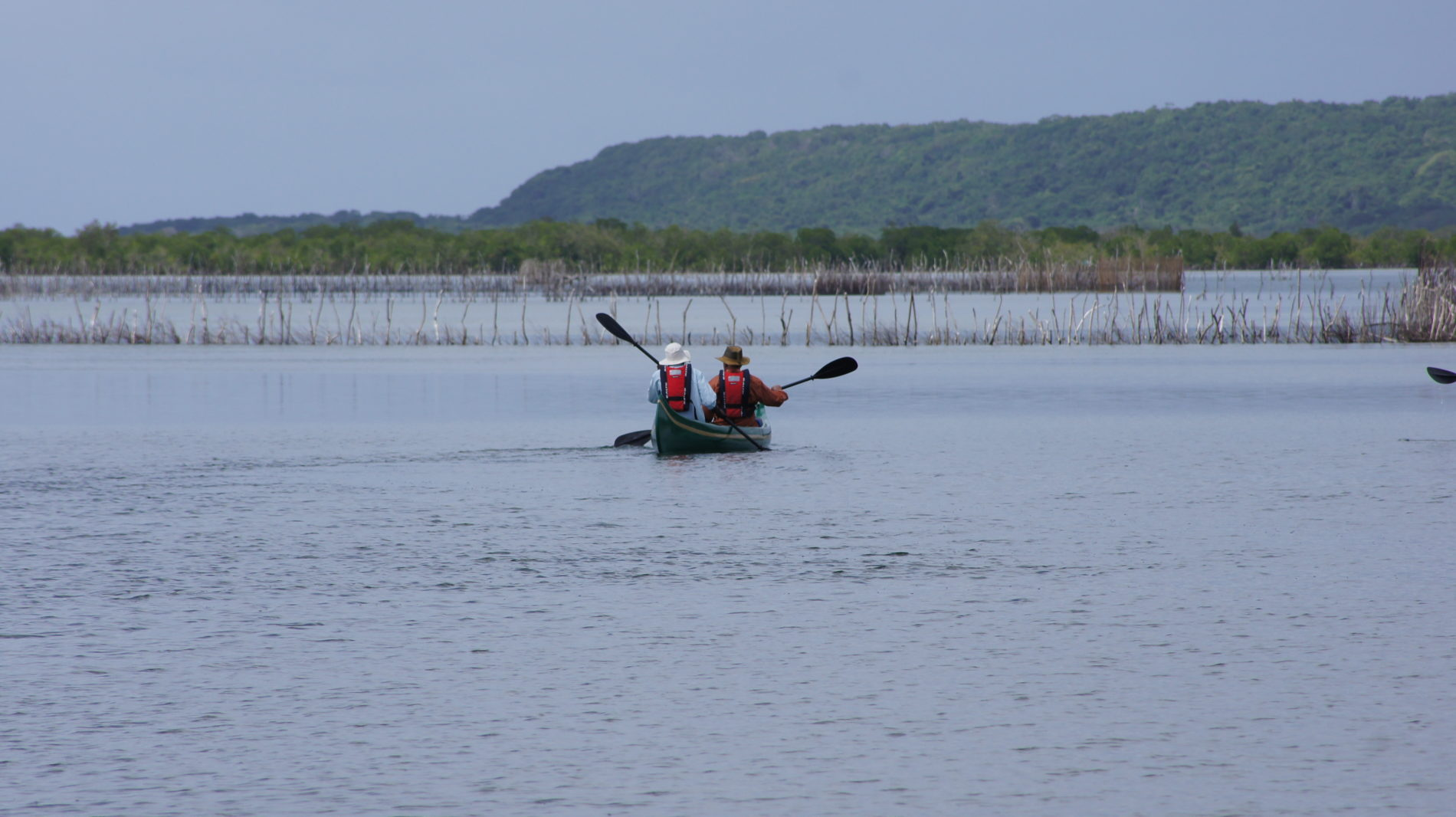 Activities in Kosi Bay - Guided canoe safaris around Kosi bay Mouth and estuary
