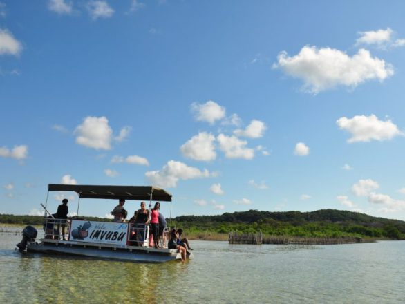 Things to do in Kosi Bay - Boat Cruise at Utshwayelo Lodge