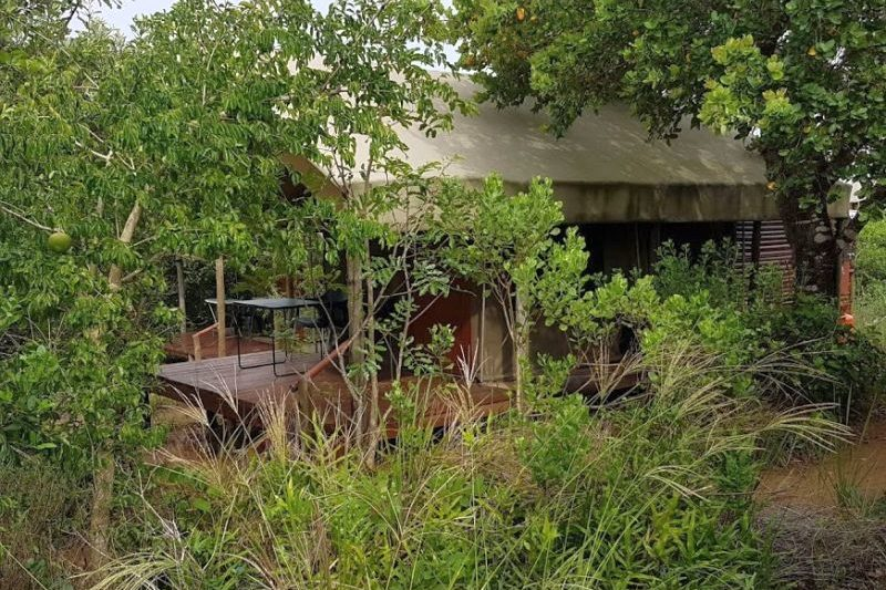 Set under shady trees our Turtle tents are private and secluded - Utshwayelo Lodge