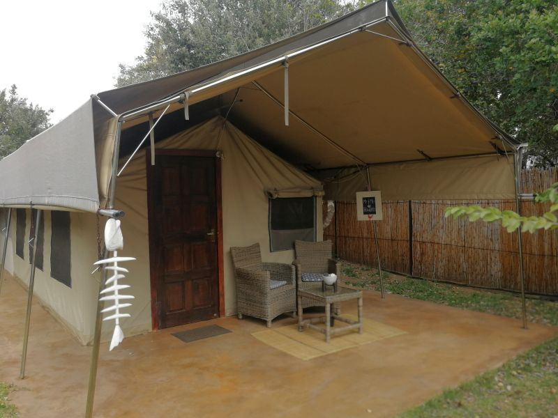 View of patio outside Tusker Suite tent, Utshwayelo Lodge