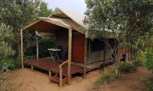 Tented camp accommodation at Utswayelo Lodge
