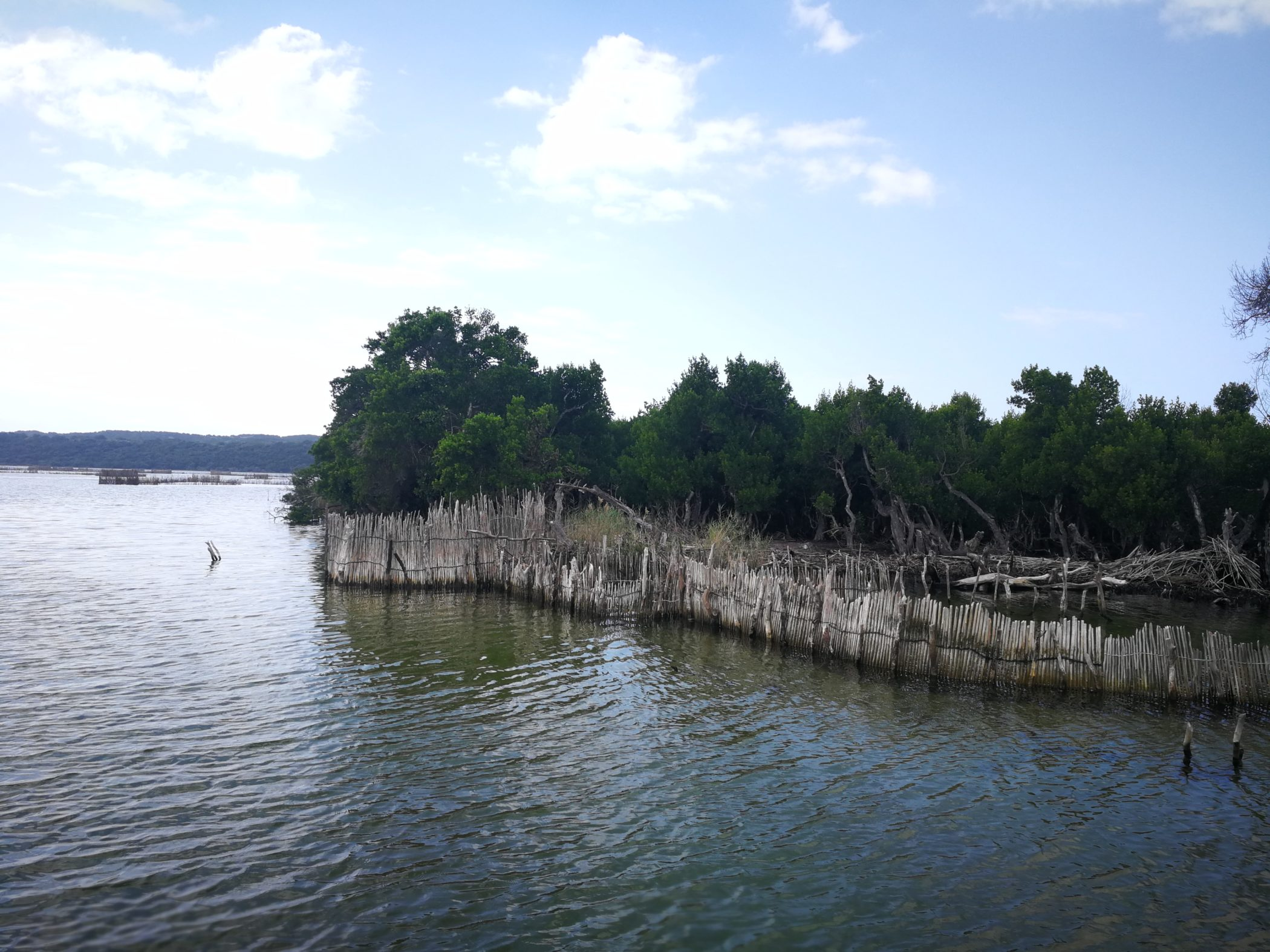 Utshwayelo Kosi Mouth Fish Traps